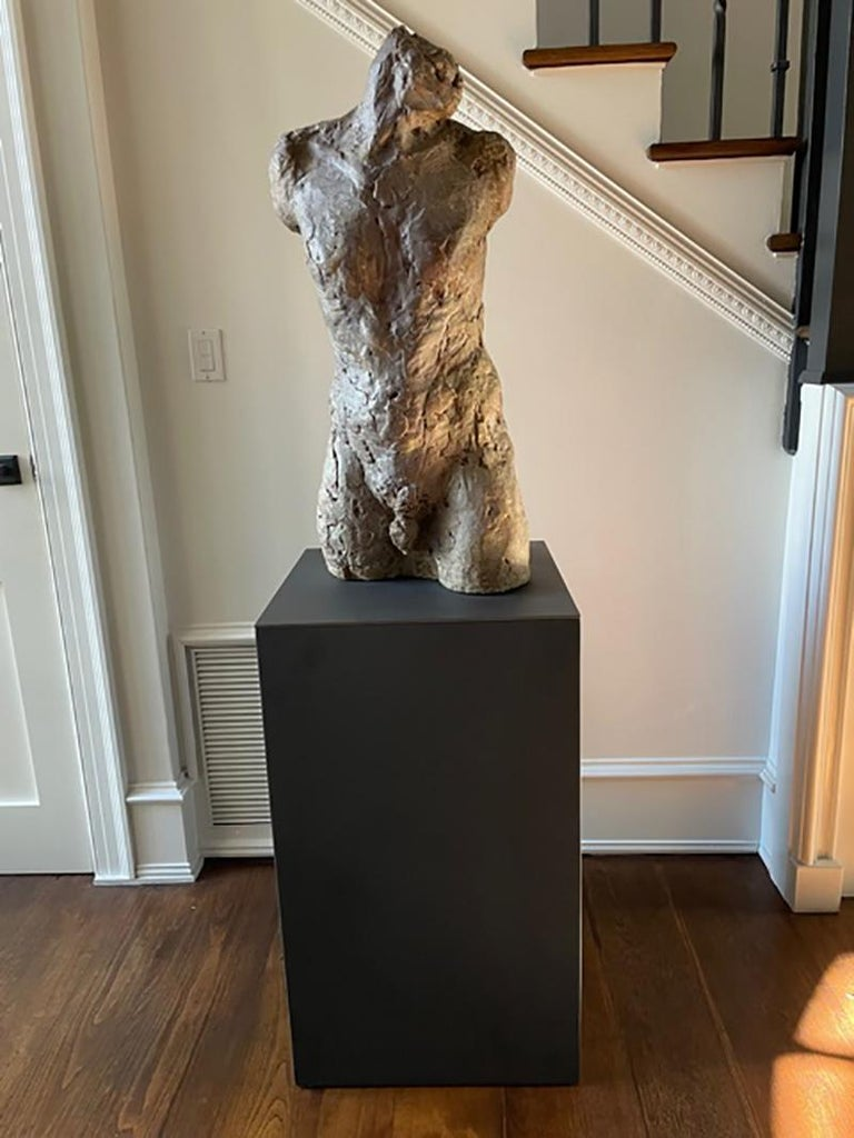 Bronze and Plaster Nude Male Sculpture For Sale 2