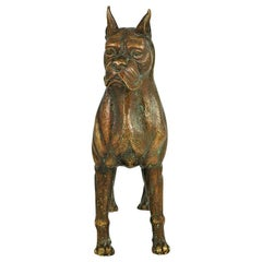 Bronze Boxer Dog