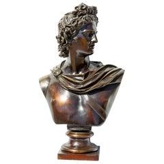 Bronze Bust of Apollo Belvedere
