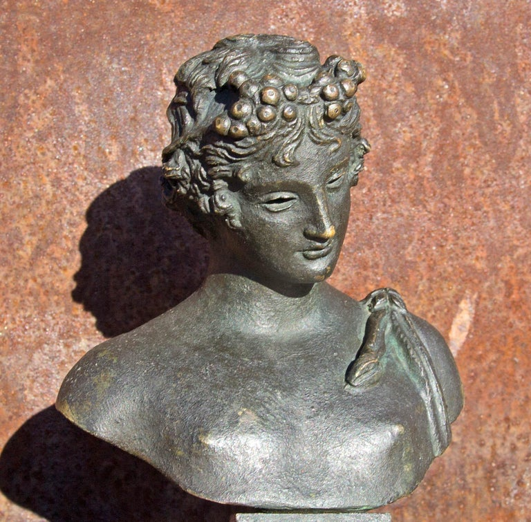 Italian Bronze Bust of Narcissus 19th Century Grand Tour For Sale