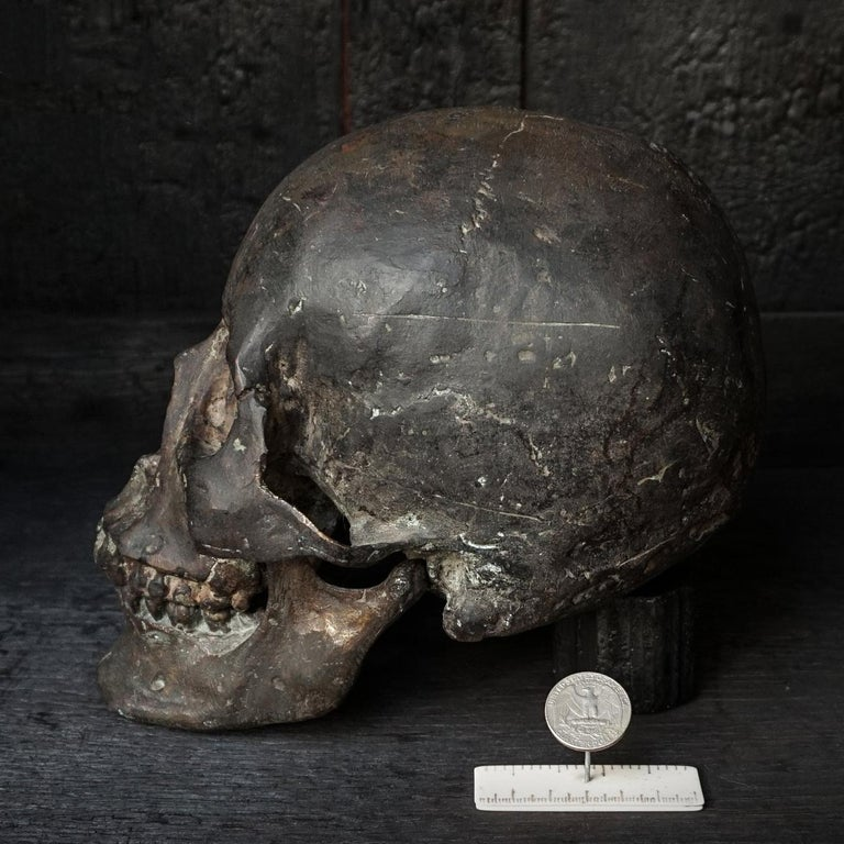 Authentic heavy and rare raw casting in bronze of a human skull, complete with lower and higher jaws.  This skull vanity (or vanitas) could be seen as a 'memento mori' to remind people of their mortality. The model was made from a real human skull.