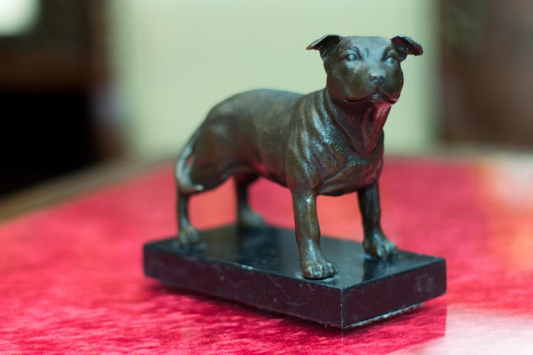 Bronze Dog Sculpture Staffordshire Bull Terrier on Marble For Sale 5