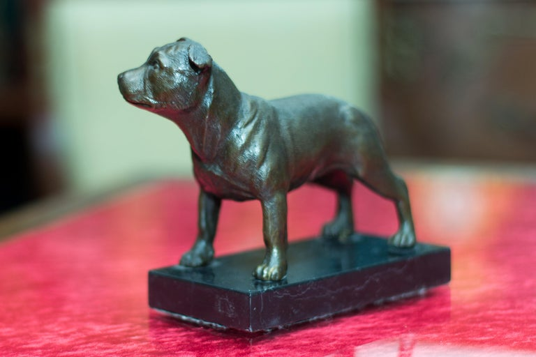 Bronze Dog Sculpture Staffordshire Bull Terrier on Marble For Sale 7