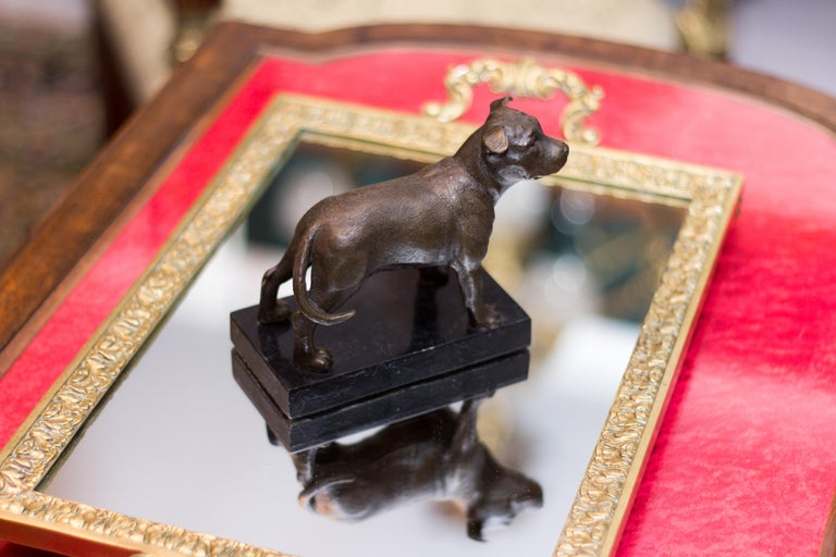 Bronze Dog Sculpture Staffordshire Bull Terrier on Marble In Good Condition For Sale In Barntrup, DE