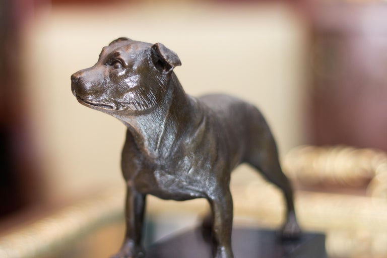 Bronze Dog Sculpture Staffordshire Bull Terrier on Marble For Sale 2