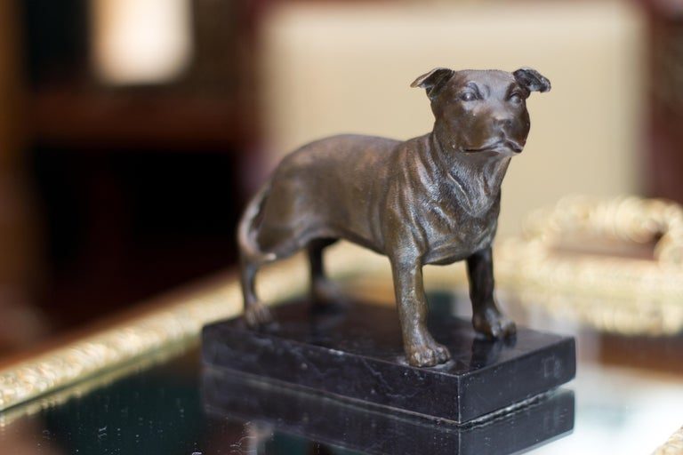 Bronze Dog Sculpture Staffordshire Bull Terrier on Marble For Sale 4