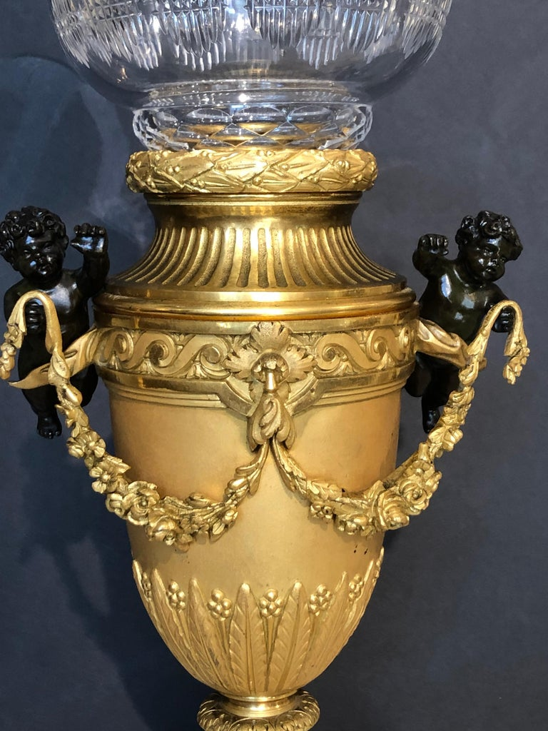 French Bronze Dore Vase with Baccarat Liner For Sale