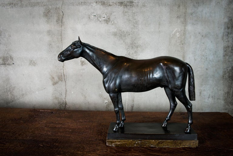 A patinated bronze sculpture of a horse by Helmut SchievelKamp (German, 1849-1890), inscribed H. SchievelKamp.