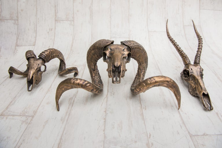 Cast Decorative Bronze Impala Skull for table accent or wall mount For Sale