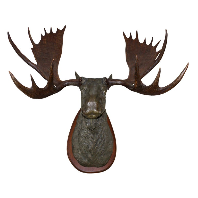 North American Bronze Moose with Antlers on Walnut Wall-Mount Plaque For Sale
