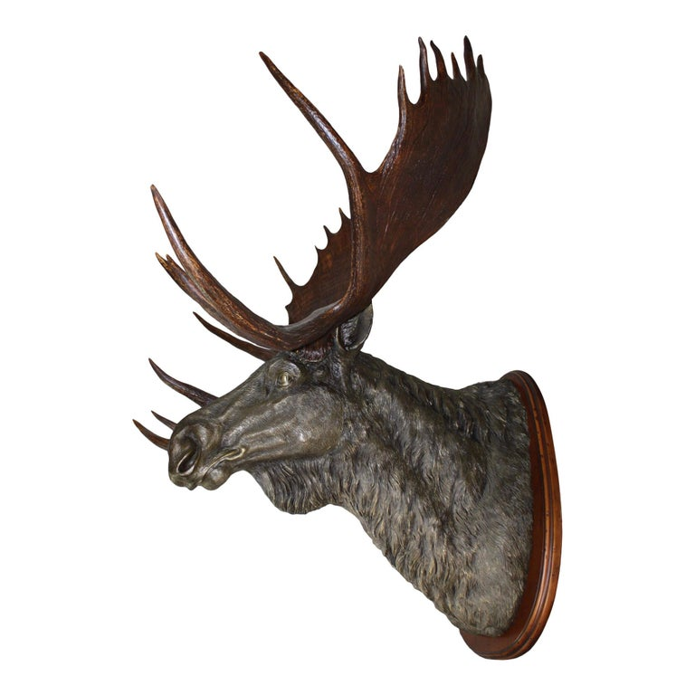 Bronze Moose with Antlers on Walnut Wall-Mount Plaque For Sale
