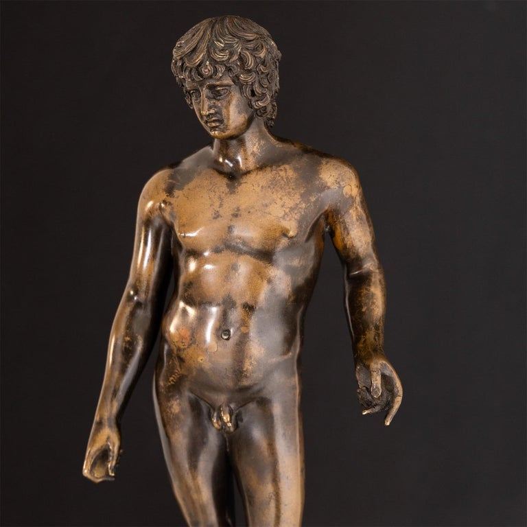 Bronze of Antinous Farnese, 19th Century For Sale 5