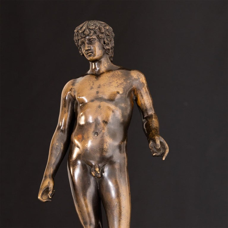 Bronze of Antinous Farnese, 19th Century For Sale 6