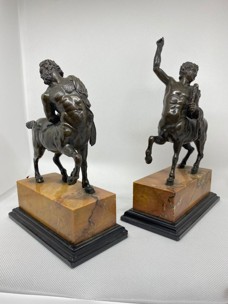Bronze Pair of the Furietti Centaurs, Italian, 19th Century For Sale 8