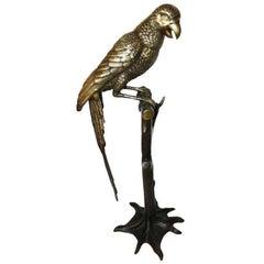 Bronze Parrot on a Perch
