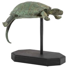 Bronze Sculpture of a Turtle