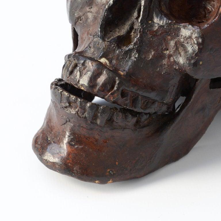 Bronze Skull Sculpture For Sale 2