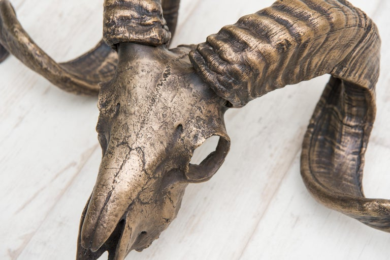 A cast bronze Tuscan Sheep skull. This accent piece has been patinated and then burnished to bring out each unique nuance in the material and skull.  Place on a wall above a fireplace and/or as a wall mount or on a table.   Production time is 3-4