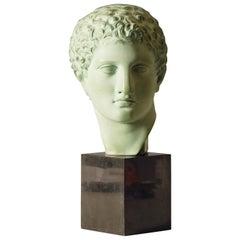 Bronzed Terracotta Bust of Roman / Greek Male on Marble Base