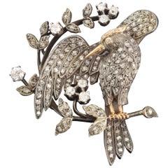 "Brooch, ""Bird Preening Itself"", Gold and Diamonds"