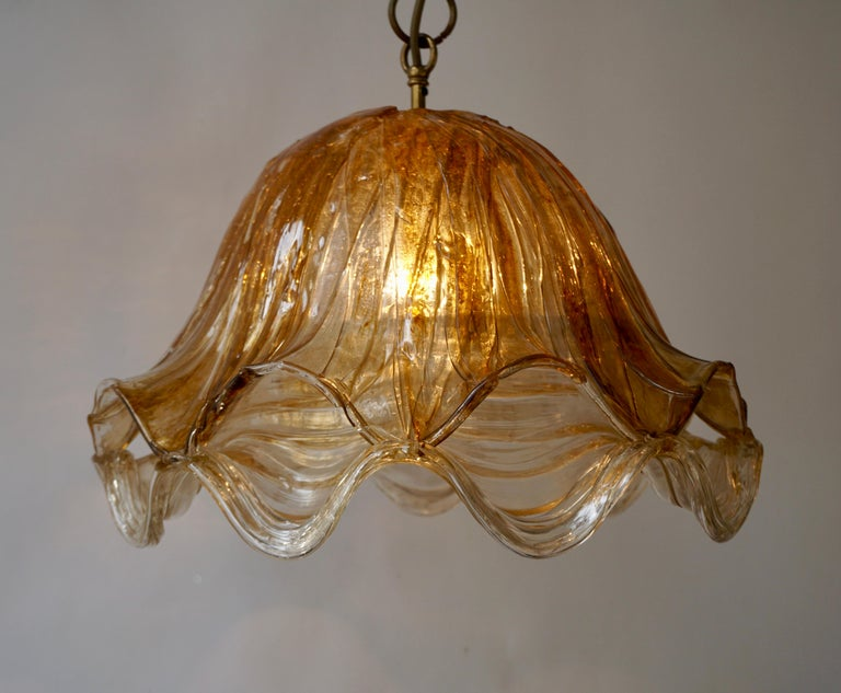 Brown and Transparent Acrylic Pendant Lamp, 1970s For Sale 10