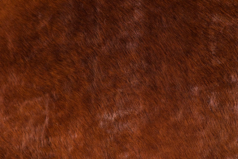 French Brown Cowhide Rug For Sale