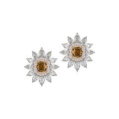 Brown Diamond Stud Earrings with Detachable Pear Shaped Diamond Halo