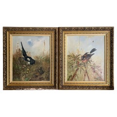 """Brunel De Neuville Pair of Paintings """"The Jay """" & """"The Chattering Magpie"""""""
