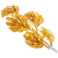 Buccellati 18 Karat White and Yellow Gold Oak Leaf Brooch