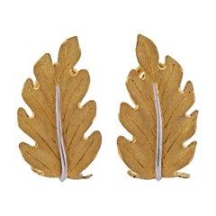 Buccellati Yellow Gold Leaf Earrings