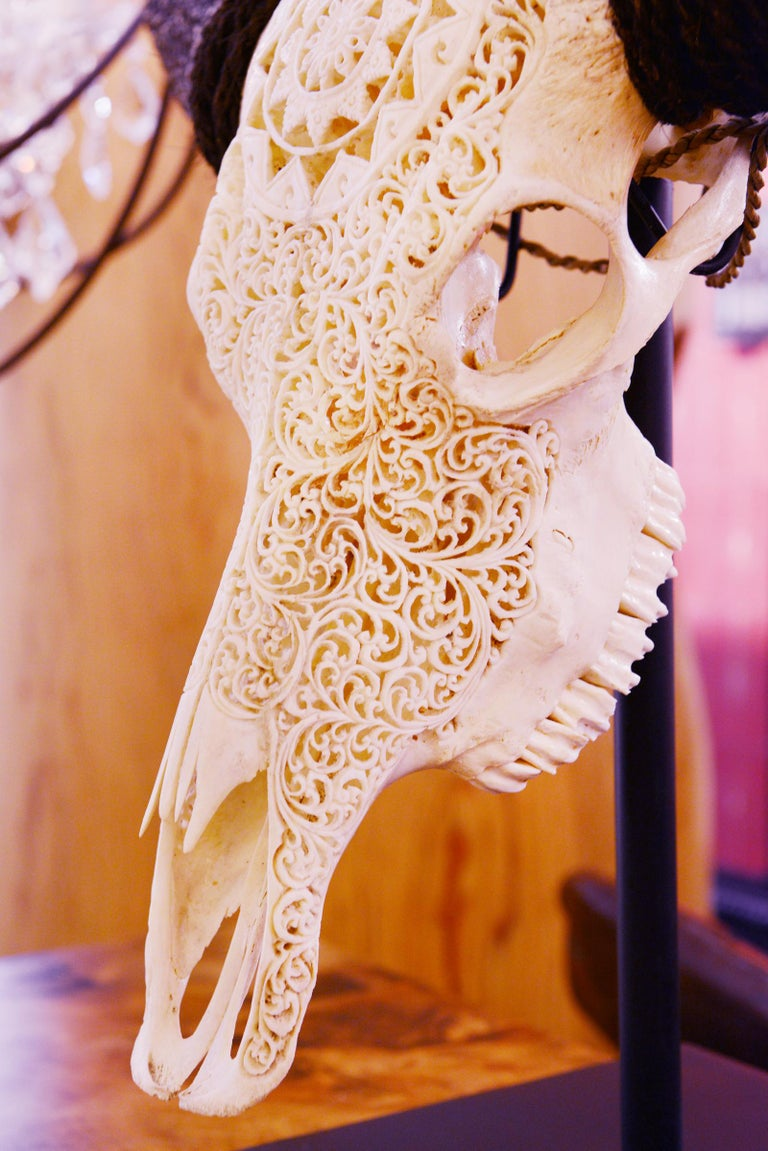 Buffalo Skull Hand-Carved Star Sculpture For Sale 6