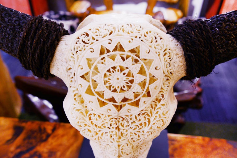 Buffalo Skull Hand-Carved Star Sculpture For Sale 2