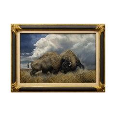 """""""Buffalo Thunder"""" Original Oil Painting by Richard Plasschaert"""