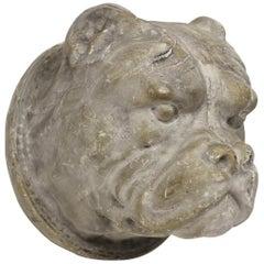 Bulldog Head Wall Mount