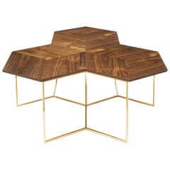 Bumble Nest Coffee Table with Gold Finish Base
