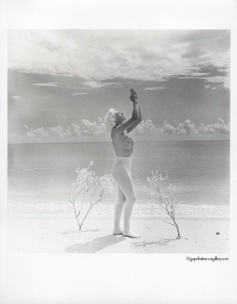 Lori Shea Praying To The Sun 2