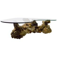 Maserholz Wurzel Top Couchtisch aus Glas