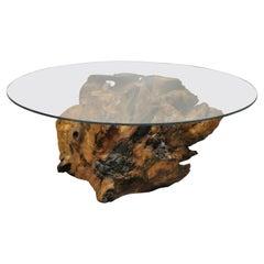 Burl Wood Organic Free Form Live Edge Driftwood Coffee Table Round Glass Top