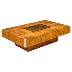 Burled Willy Rizzo Coffee Table
