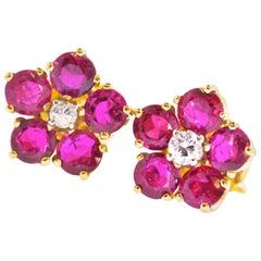 Burma Ruby and Diamond Earrings by Pierre/Famille