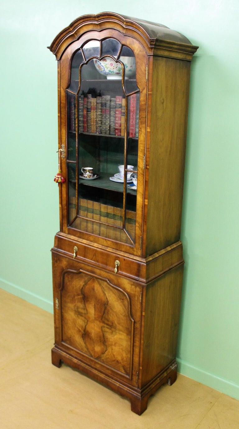 Burr Walnut Domed Top Bookcase For Sale 6
