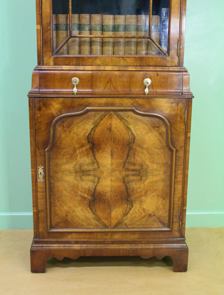English Burr Walnut Domed Top Bookcase For Sale