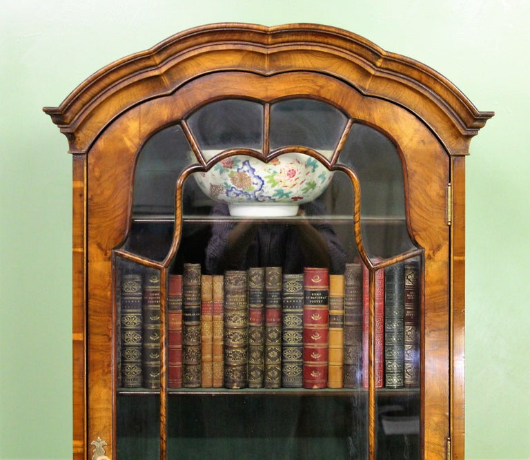 Burr Walnut Domed Top Bookcase In Good Condition For Sale In Poling, West Sussex