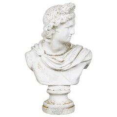 Bust, Apollo Belvedere