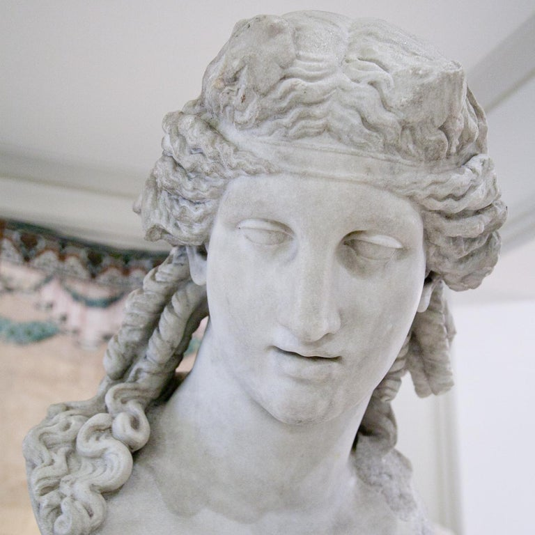 Bust of Antinous as Dionysus, 19th Century 3