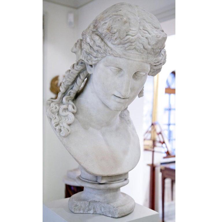Büste des Antinous als Dionysos, 19. Jahrhundert 4