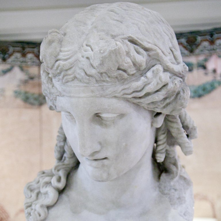 Bust of Antinous as Dionysus, 19th Century 5