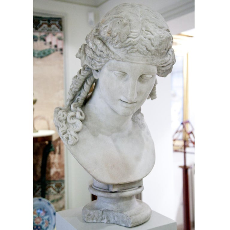 Bust of Antinous as Dionysus, 19th Century 8