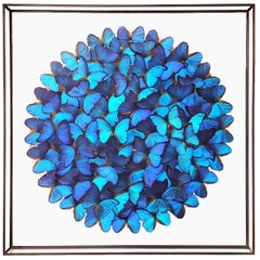 Butterflies Morphos Wall Decoration