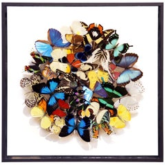 Butterflies Multi-Colors Medium Frame Wall Decoration